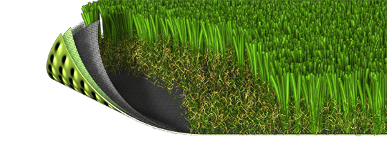 image of SYNFescue SF251 artificial grass