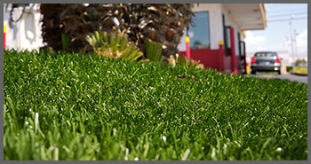 Synlawn 174 Artificial Grass Never Looked More Natural