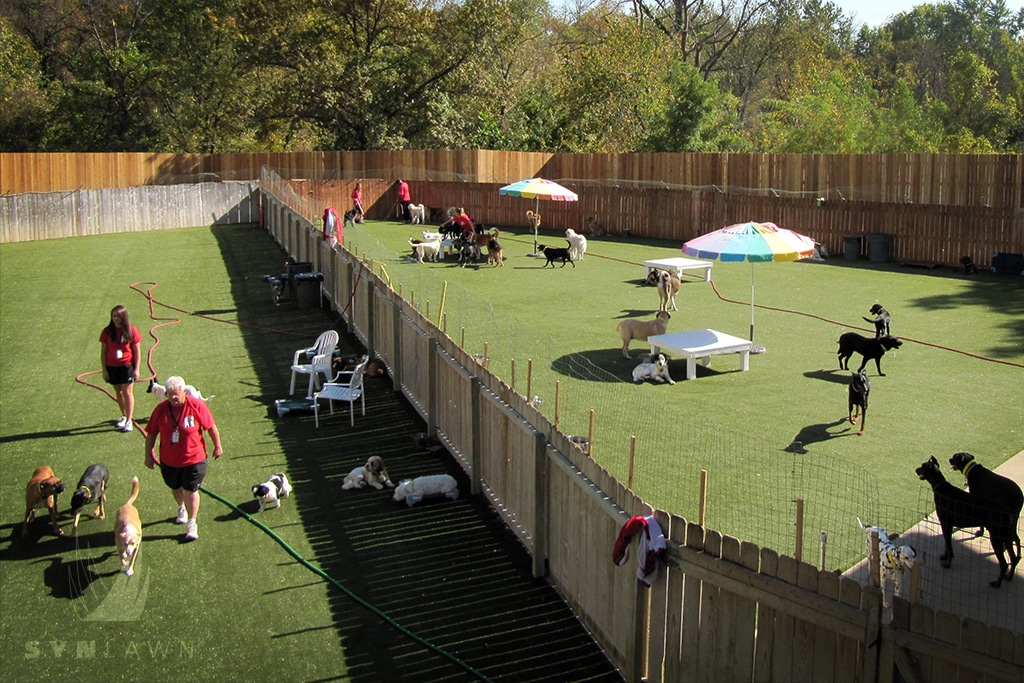 image of an outdoor area at a pet boarding facility